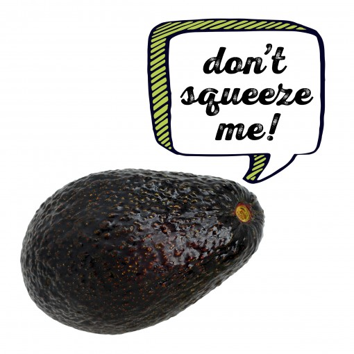 avocado scream: don't squeeze me